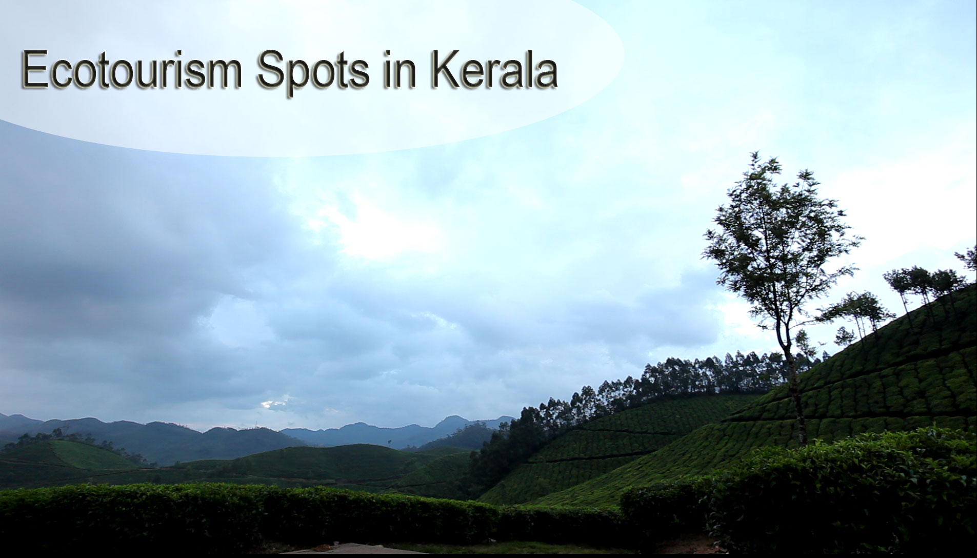 Top 10 Ecotourism Spots in Kerala