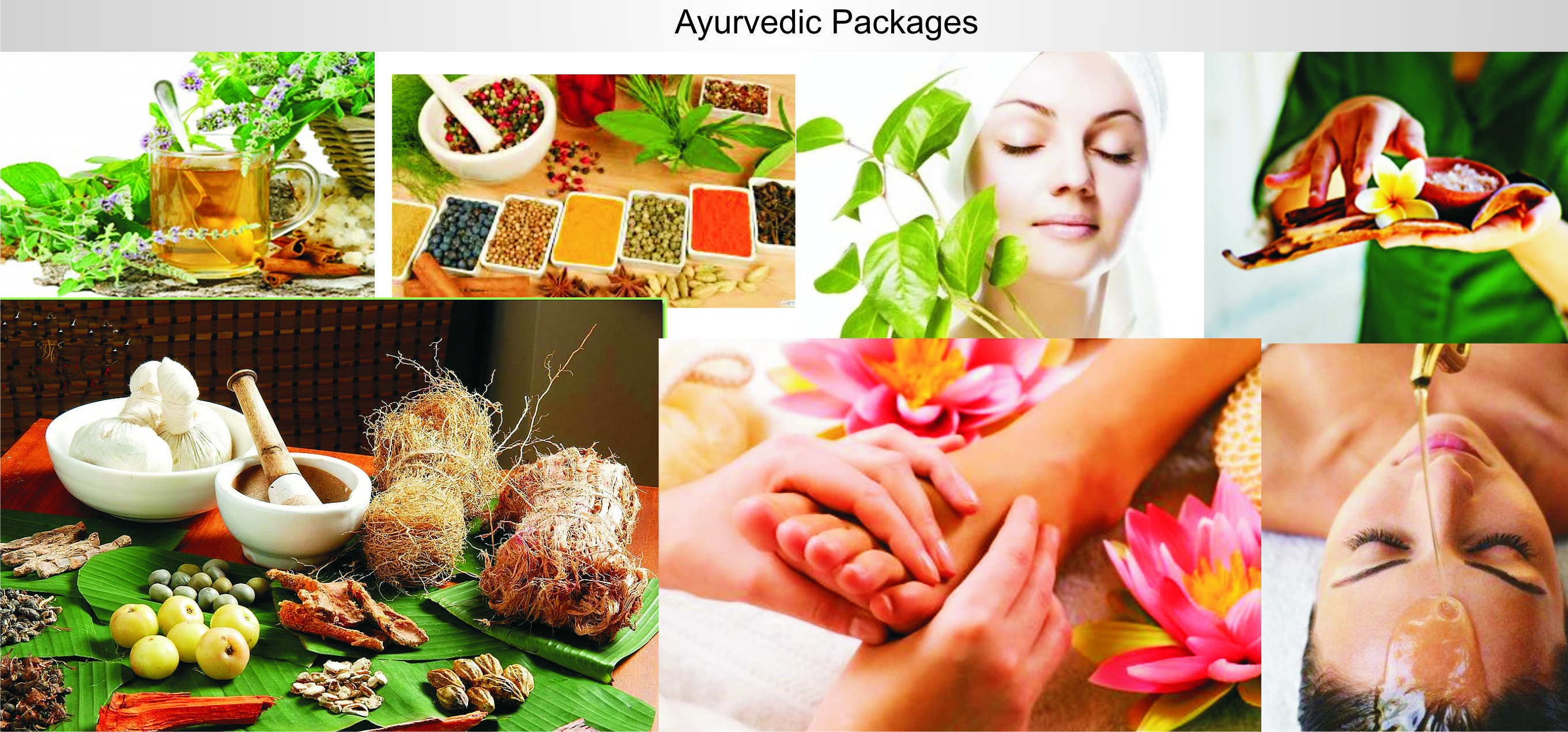 Best Ayurveda Tour Packages in Kerala