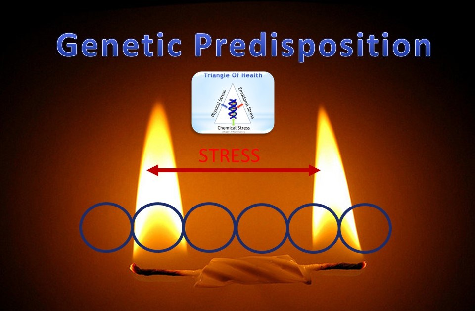 Understand the Basics of Genetic Predispositions
