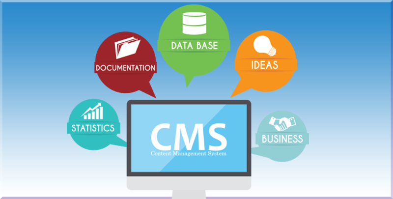 Importance of CMS for website